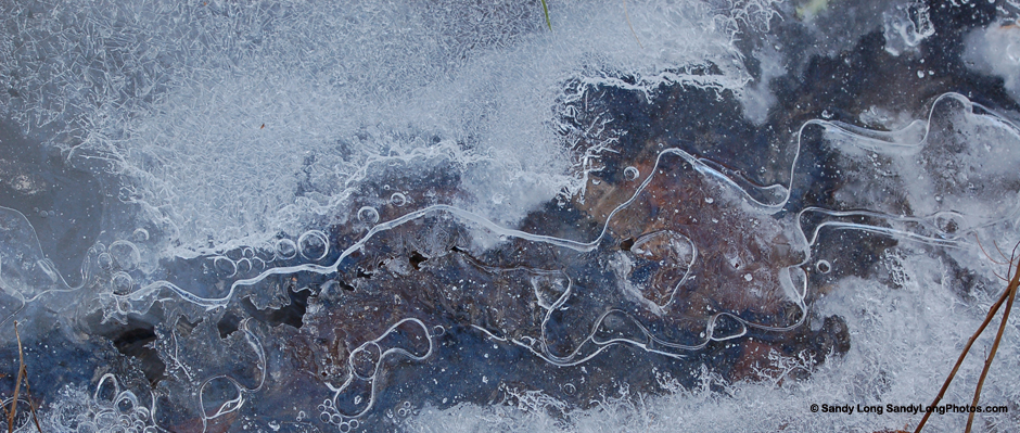 Photo of ice bubbles by Sandy Long.