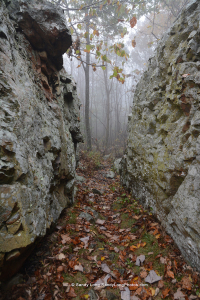 Shenandoah National Park Artist in Residence Sandy Long captured this photograph of Catoctin Rocks while hiking near Compton Gap.
