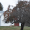Photo by Sandy Long of the farmhouse at Lemons Brook Farm where Rosie Starr conducted her Farm and Country Interviews.